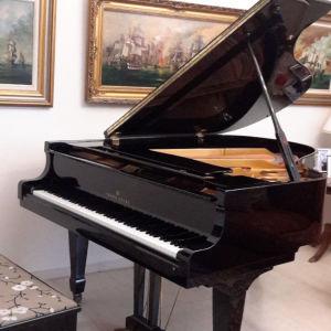 Πιάνο με ουρά Young Chang