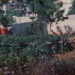 Πωλείται μονοκατοικία (οικόπεδο και κτίσμα) στην Αγία Άννα (Κούκουρα), Ν. Βοιωτίας