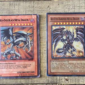 Red Eyes Black Metal Dragon & Red Eyes Darkness Metal Dragon