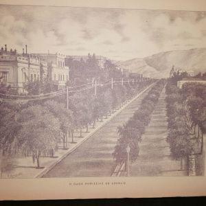Γκραβούρα Η οδός Κηφισίας εν Αθήναις 1896