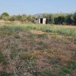 Αγροτεμαχιο