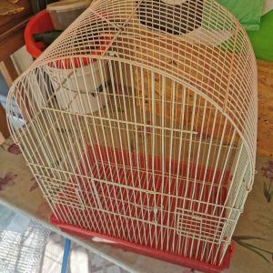 κλουβί για πουλιά, παπαγάλο κλπ