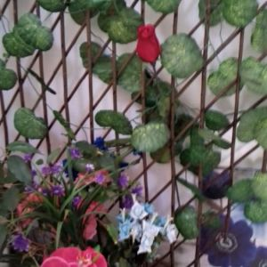 Πέργκολα μίνι με ψεύτικα λουλούδια