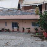 Πωλείται όροφοδιαμερισμα 147 τμ. στην Σπερχογεια Μεσσηνίας. Διαθέτει βεράντες, αυλή και θέα σε κήπο.