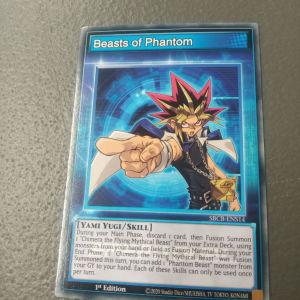 Skill Cards (Yugi)