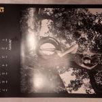 ΣΥΛΛΕΚΤΙΚΟ ΗΜΕΡΟΛΟΓΙΟ PIRELLI  2014  ΑΠΟ ΤΟΝ HELMUT NEWTON