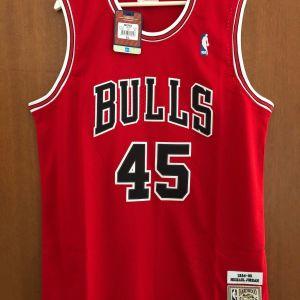 Φανέλα Εμφάνιση Michael Jordan Chicago Bulls 1994-95 μέγεθος XL Συλλεκτική