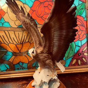 Αετός Διακοσμητικό Υλικό Ρητίνη
