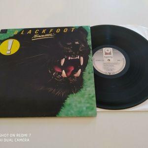 BLACKFOOT - TOMCATTIN' LP