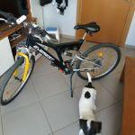 ποδηλατα mountain και bmx