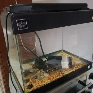 Ενυδρείο ψαριών 25 λιτρα