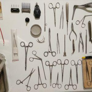 Κτηνιατρικά χειρουργικά εργαλεία