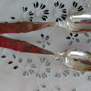 Ασημένια κουταλάκια