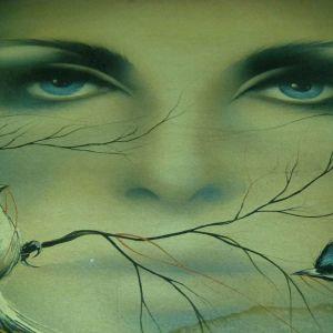 Πίνακας ζωγραφικής - Γυναικεία Μάτια