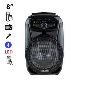 Ενεργό ηχείο FEIYIPU ES-81 με φώτα LED, ασύρματο μικρόφωνο και τηλεχειριστήριο, Bluetooth,