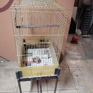 κλουβί παπαγάλου