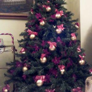Χριστουγεννιάτικο δέντρο, 2 μέτρα ύψος.