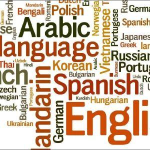 Παράδοση ιδιαίτερων μαθημάτων για Ισπανικά,Ιταλικά,Πορτογαλικά Ρουμάνικα,Ρώσικα,Σέρβικα,,Βουλγάρικα,Αραβικά,Εβραϊκά και Τούρκικα.