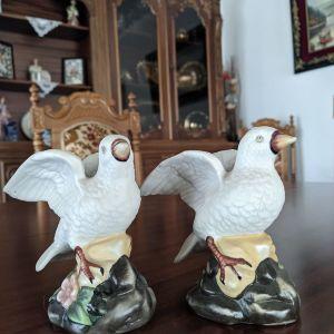 Διακοσμητικά πουλιά.