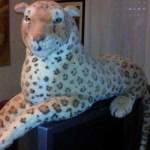 λεοπάρδαλη λουτρινη μεγάλη