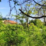 πωλείται  άρτιο οικοδομήσιμο οικόπεδο εντός σχεδίου αγοριανη Παρνασσού