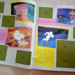 ΑΓΓΕΛΙΑ ΑΛΜΠΟΥΜ CONAN THE ADVENTURER ΚΟΝΑΝ  ΠΑΝΙΝΙ PANINI 1994 ALBUM
