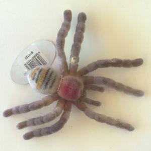 Αράχνη μεγάλη χνουδωτή καινούργια