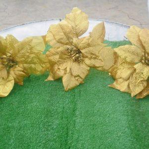 10 κλαδιά Χριστουγεννιάτικα διακοσμητικά λουλούδια, Αλεξανδρινά, άσπρα με κόκκινα πουάν, πανέμορφα. Και τρία χρυσά Αλεξανδρινά πανέμορφα, επίσης διακοσμητικά.