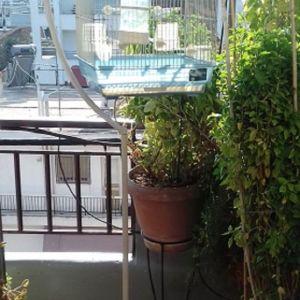 07-03-14_4) Stant με Κλουβί για Καναρίνια - Παπαγαλάκια,