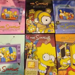 Dvd,simpsons 6season