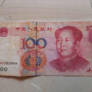Chinese Yuan  2005