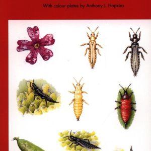 Thrips: Vol. 25 (Naturalists' Handbooks)
