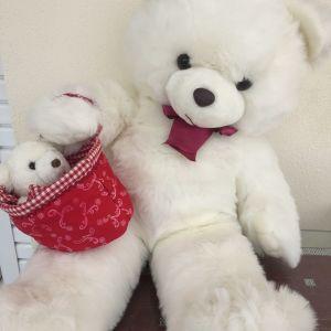 Αρκούδος με αρκουδάκι