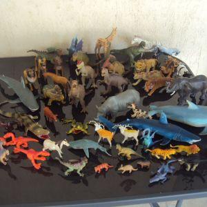52 διαφορετικα ζωα .Ζωα της ζουγκλας,αγροκτηματος,θαλασσας,δεινοσαυροι.