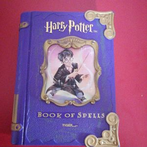 Harry Potter Electronic Book