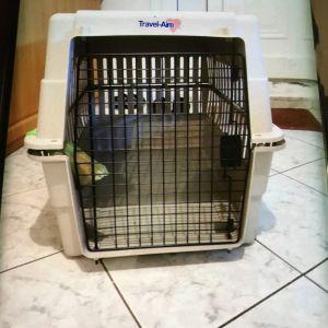 Κλουβί μεταφοράς σκύλου