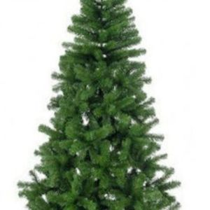 Χριστουγεννιάτικο δέντρο Colorado