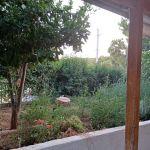 Καθαρισμοί οικοπέδων κήπων από χόρτα κλαδέματα συντήρηση κήπων Σε λογικές τιμές σε όλοι την Αττική