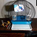 Μπλε Κλουβί για Πουλιά