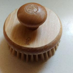 Βουρτσα σωματος (Dry Brush)