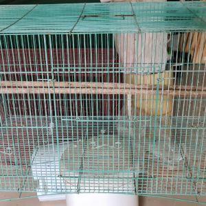 Κλουβί για πουλιά