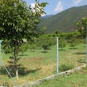 Πωλούνται δύο αγροτεμάχια στο αετοβουνι βυρωνειας Σερρών..