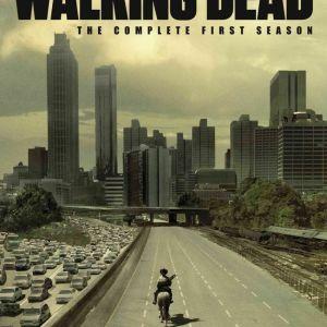 The Walking Dead, season 1 DVD boxset.