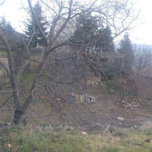 Τρίκαλα Κορινθίας μεση συνοικία  οικοπεδο