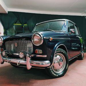 FIAT 1100 SPECIAL