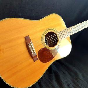 Ακουστική κιθάρα Vintage E600IM