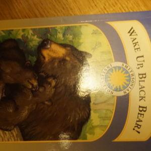 αγγλικο βιβλιο για παιδια