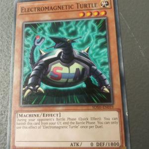 Electromagnetic Turtle