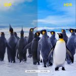 TV BOX   X96Q MAX Allwinner H616 ΧΩΡΙΣ Συνδρομές Για ΠΑΝΤΑ - Αθλητικά - Ταινίες - Σειρές - TV - Ντοκιμαντέρ - Παιδικά - Παιχνίδια - COSMOTE TV