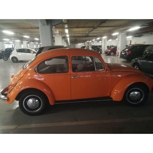 VW skaraveos
